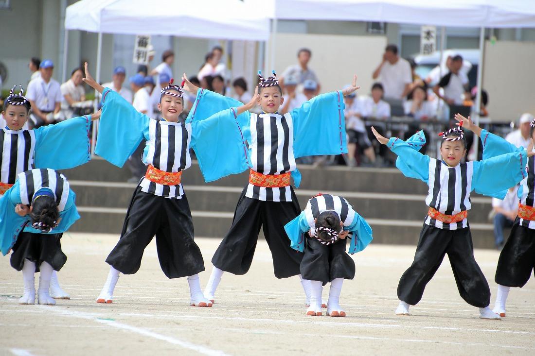 seika16sakura 33