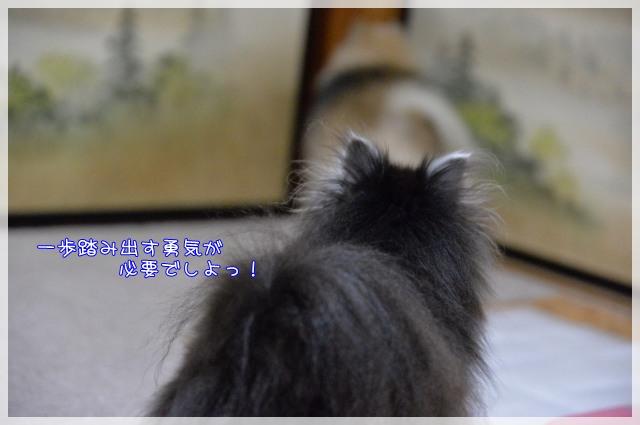 お手本5 17-02
