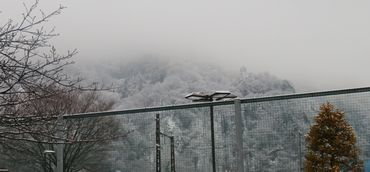 IMG_7156雪景色