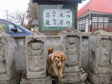 IMG_7686アイちゃん寺