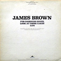 JamesBrown-ForGood微シミ200