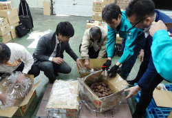 C4rA-f5VMAAy6uy県野菜、海上輸送を実験