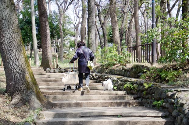 ⑦宝来公園を抜ける