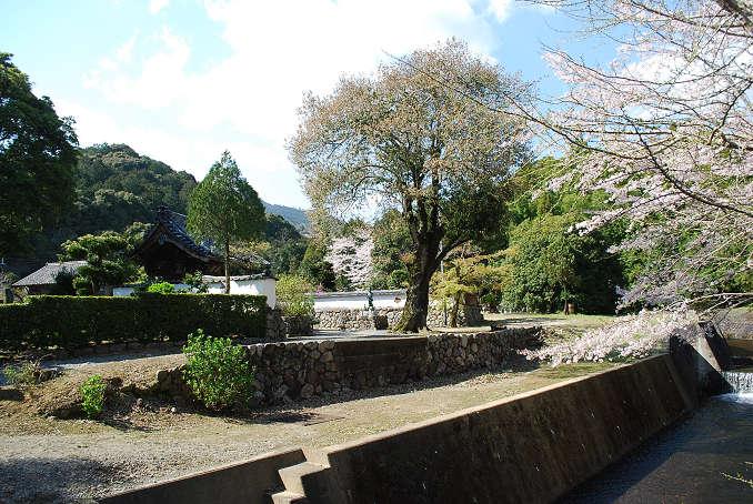 松源院の風景