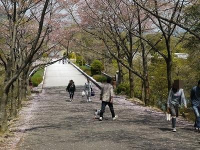 播磨中央公園 (2)