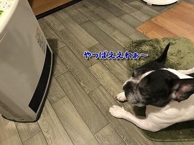 ぬくぬく (3)