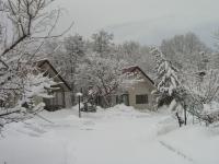 20170315春雪