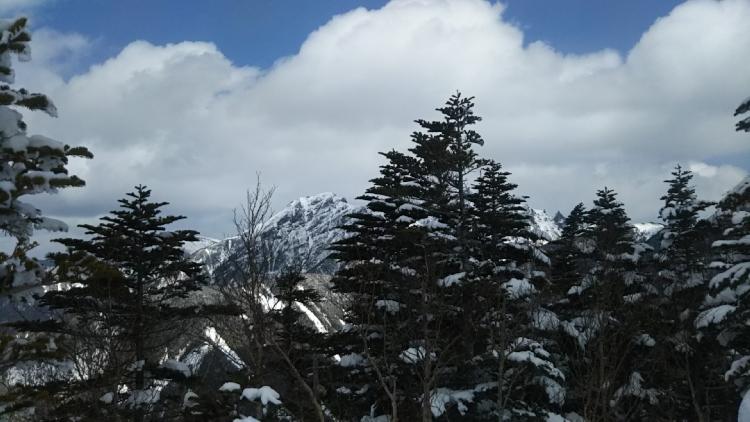 2017西岳005