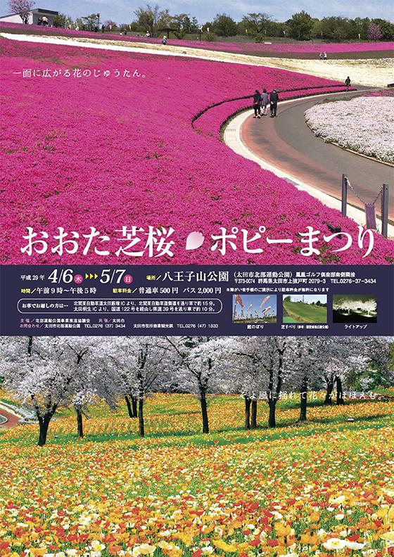 太田芝桜ポピー祭り