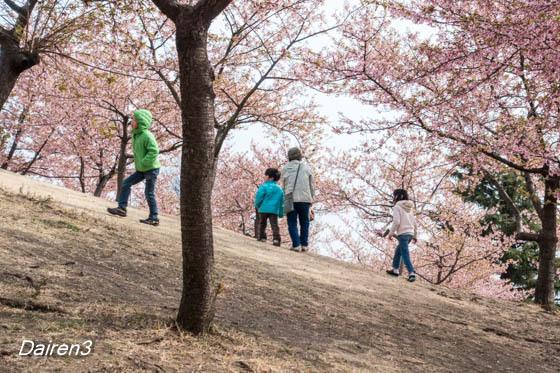 伊勢崎市民のもり公園
