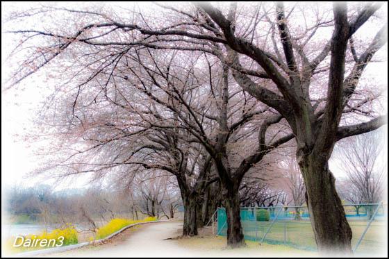前橋南公園