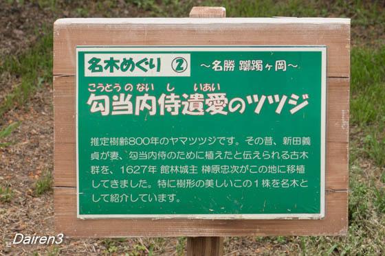 舘林つつじが岡公園