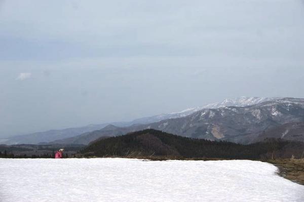 春山と里の桜18