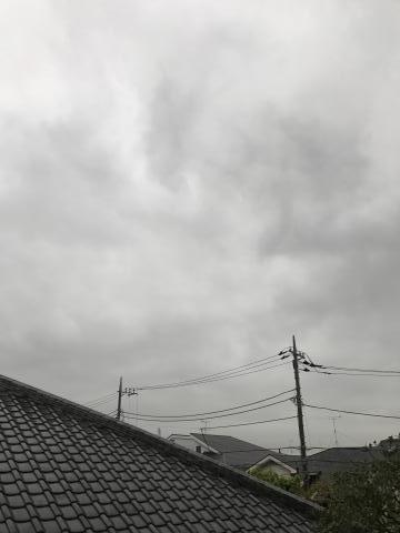 2017-04-27.jpg