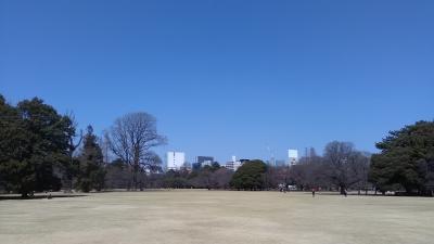 2017年3月22日新宿御苑