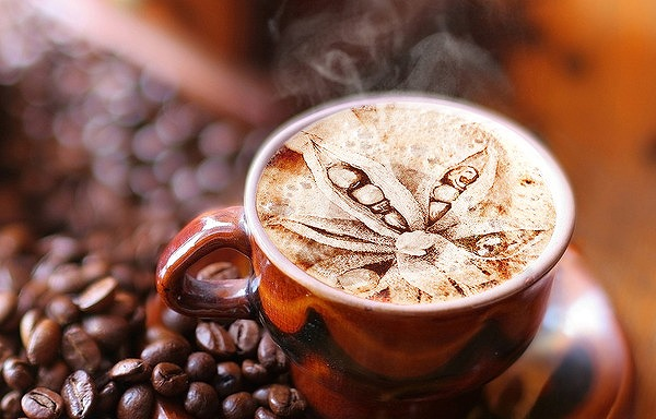 加工コーヒー