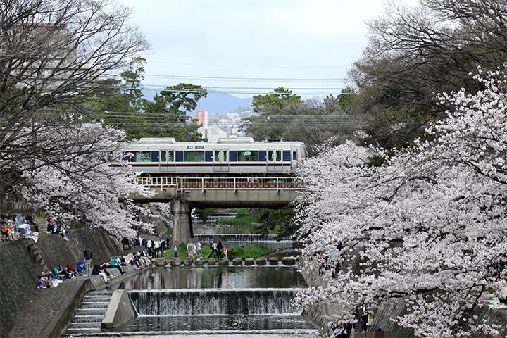 20170409_shukugawa_park-03.jpg