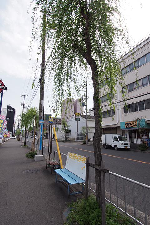 20170415_takaida_yanagidori_naka-02.jpg