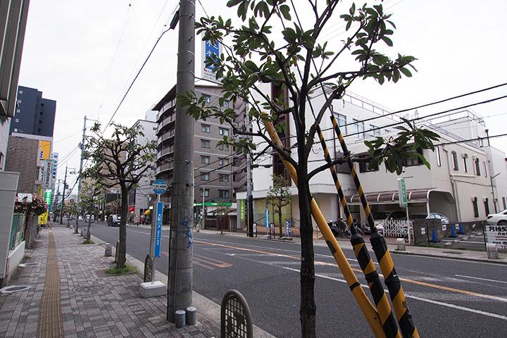 20170415_the_osaka_city_shinkin_bank_yao_office-05.jpg