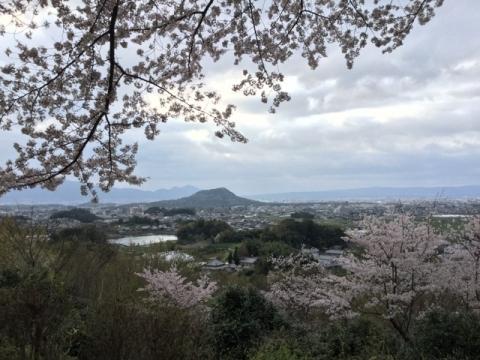 甘樫丘からの眺め 2017年4月