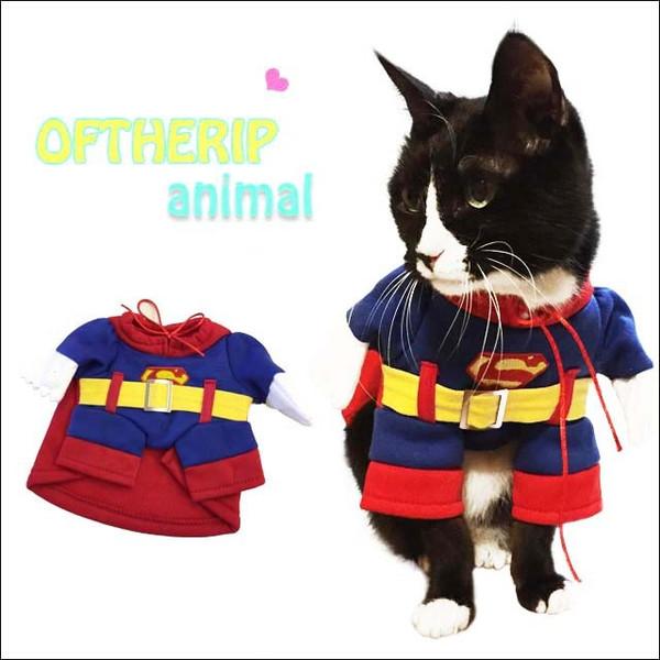 ペット用おもしろスーパーマンコスプレ
