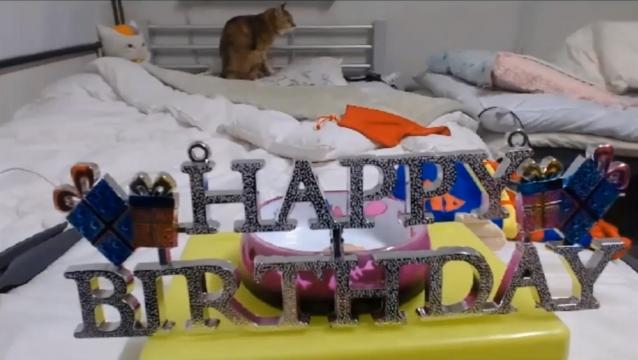 白雪プラン14 HAPPY BIRTHDAY LOGO