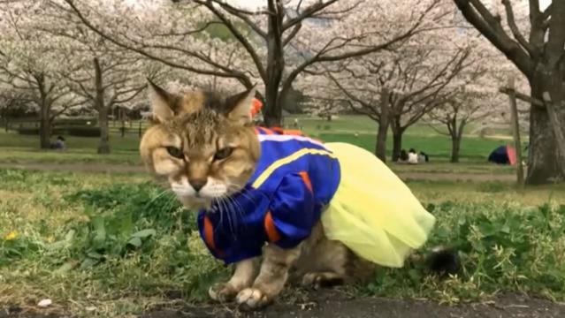 お花見配信-自然公園編-08 プラ雪姫02