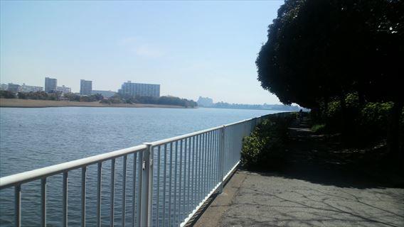 谷津干潟南側遊歩道