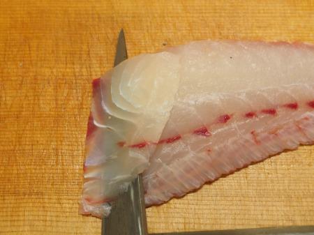 コロダイにぎり寿司23