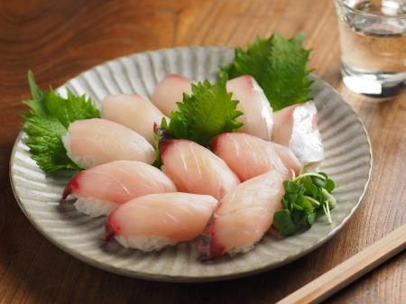 地アジ握り寿司13