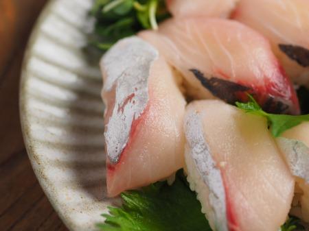 地アジ握り寿司12