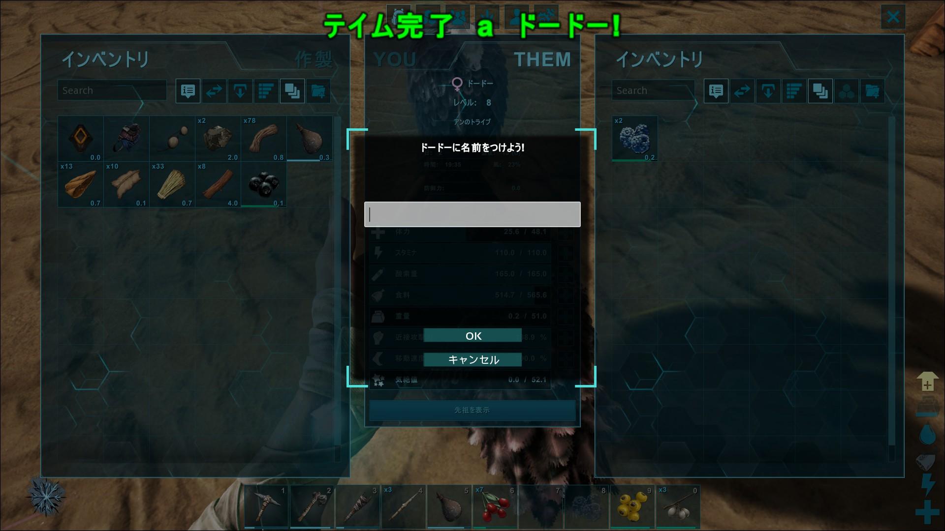 ark_04.jpg
