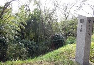 塚山公園1