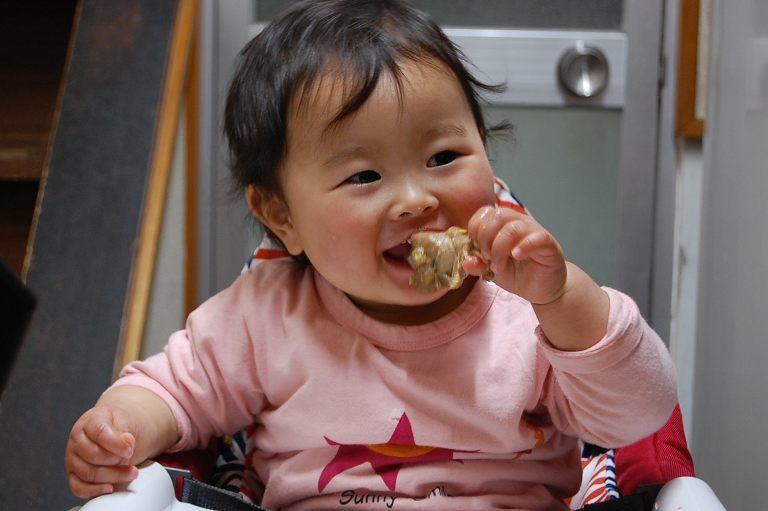 肉食系乳児