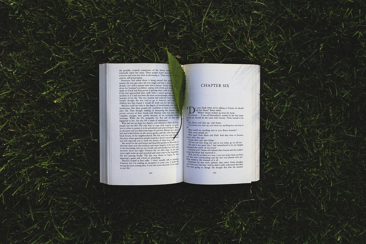 book-791765_1280.jpg