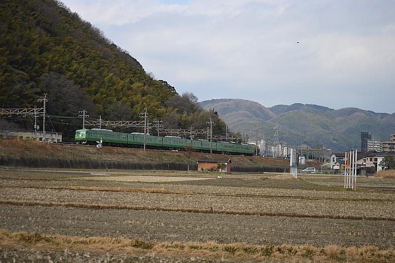 DSC_4691z.jpg