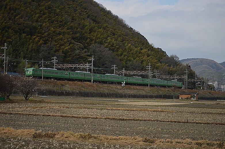 DSC_4693z.jpg