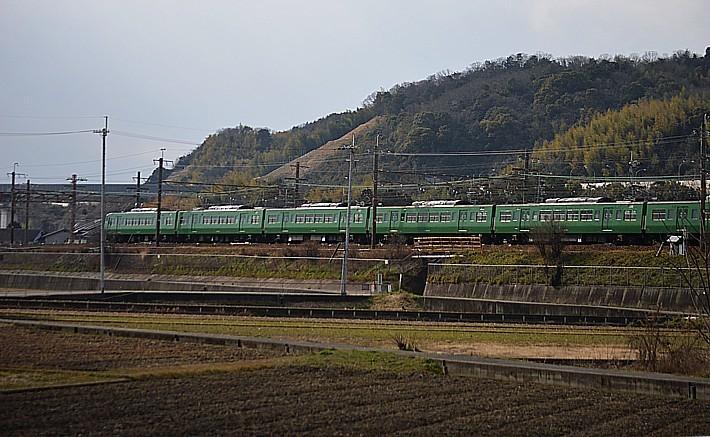 DSC_4700z.jpg