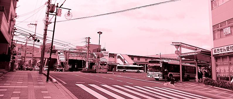 DSC_5316z.jpg