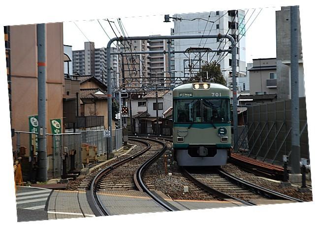 DSC_5319z.jpg