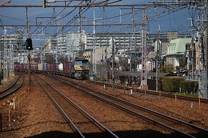 DSC_5601z.jpg