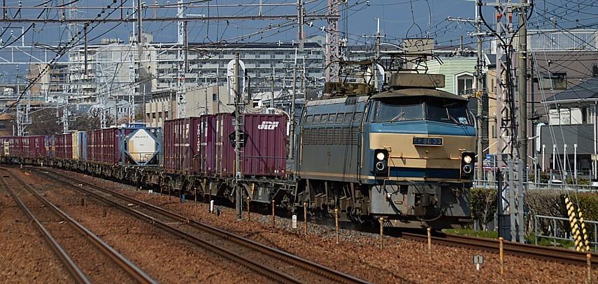 DSC_5605z.jpg
