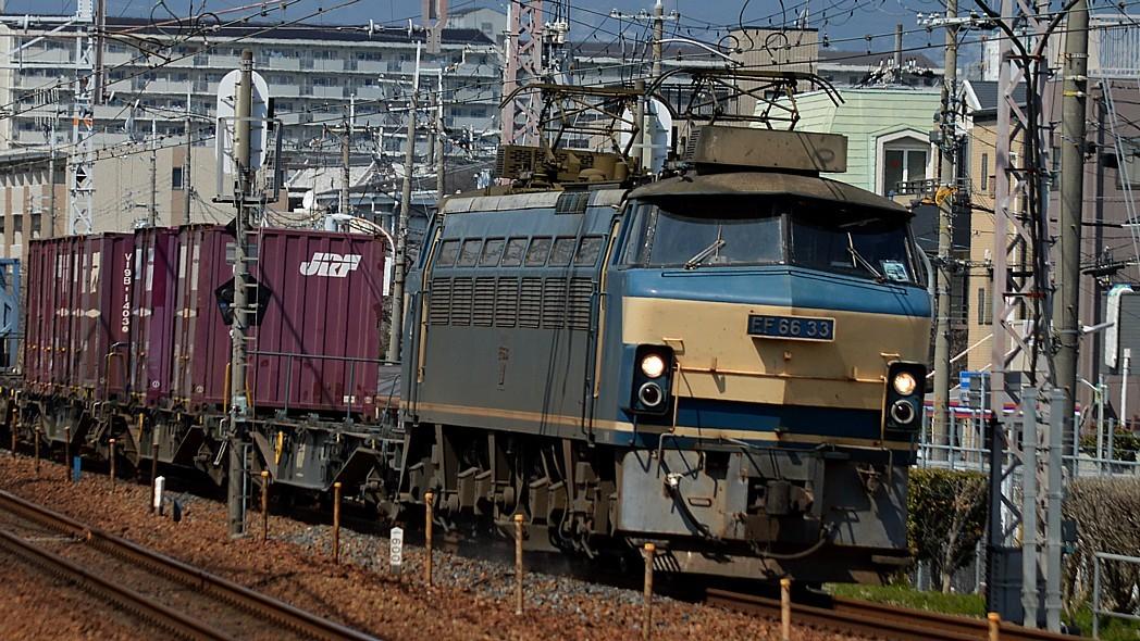 DSC_5605zw.jpg