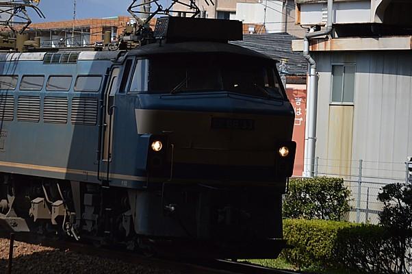 DSC_5607z.jpg