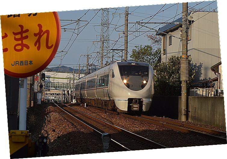 DSC_6231s.jpg
