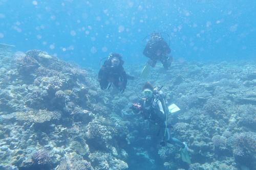 GW水納島