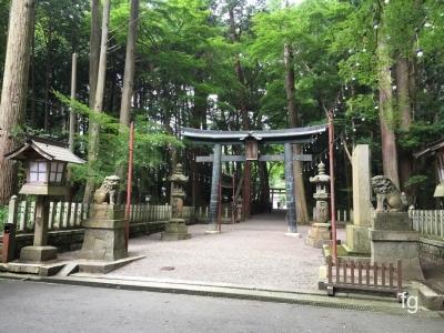 20160703田村神社_05
