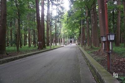 20160703田村神社_09