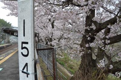 20170408河内堅上駅 - 2