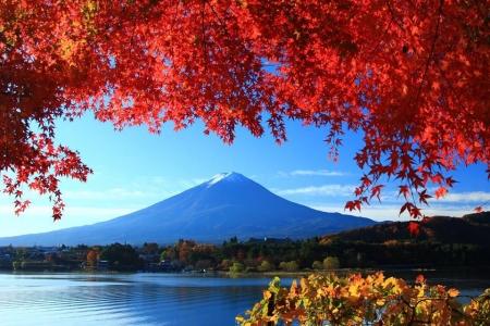 20121122河口湖町大石